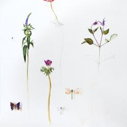 Botanica_Pablo_Echevarria